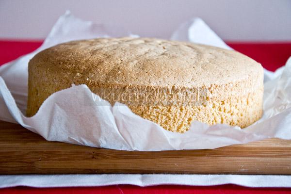 Biszkopt jasny na tort